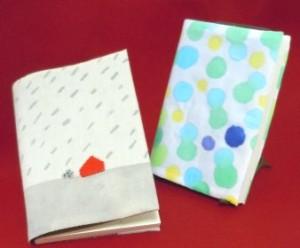 ws-bookcover1s